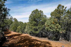 Photo of 1540 Bent Hill, Santa Fe, NM 87501 (MLS # 201801496)