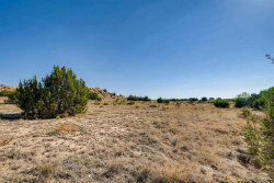 Photo of 24 Camino Libre, Galisteo, NM 87540 (MLS # 201805058)