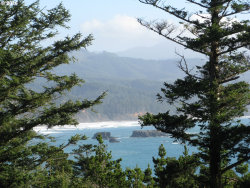 Photo of Boot Hill , Unit 7, Port Orford, OR 97465 (MLS # 18195634)
