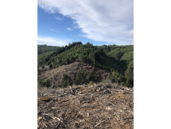Photo of 0 26S-14-27-TL 00200, Coos Bay, OR 97420 (MLS # 18376851)
