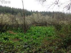 Photo of 58323 GARDEN VALLEY RD, Coquille, OR 97423 (MLS # 18502980)