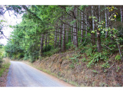 Photo of Fern Ridge RD, Langlois, OR 97450 (MLS # 18650799)