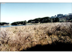 Photo of Jetty Road, Bandon, OR 97411 (MLS # 19024043)