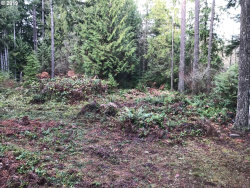 Photo of 0 Log House Road, Colton, OR 97017 (MLS # 19032187)