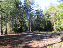 Photo of Morrison RD, Bandon, OR 97411 (MLS # 19032912)