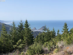 Photo of 0 Pacific Highlands DR, Port Orford, OR 97465 (MLS # 19130087)