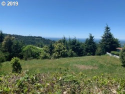 Photo of Deady Street, Port Orford, OR 97465 (MLS # 19182503)