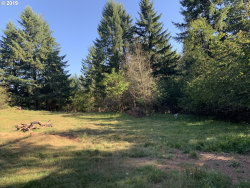 Photo of 0 NE 151th ST, Brush Prairie, WA 98606 (MLS # 19355356)