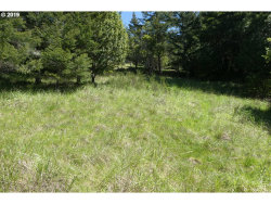 Photo of 30010 LITTLE CREEK CT, Gold Beach, OR 97444 (MLS # 19441190)