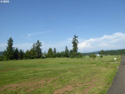 Photo of 20613 S FREDS WAY, Colton, OR 97017 (MLS # 19455780)