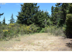Photo of Old Mill RD, Port Orford, OR 97465 (MLS # 19483462)
