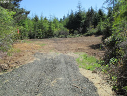 Photo of 88409 Fuchsia LN, Bandon, OR 97411 (MLS # 19493621)