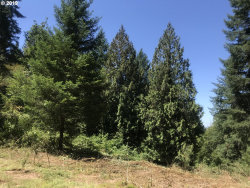 Photo of 0 S Salo RD, Mulino, OR 97042 (MLS # 19530878)