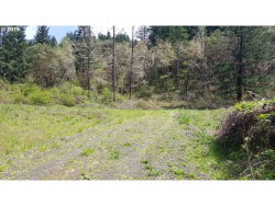 Photo of 0 OLD HIGHWAY 99 NORTH, Oakland, OR 97462 (MLS # 19631100)