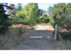 Photo of 42412 GARRISON LAKE RD, Port Orford, OR 97465 (MLS # 19664458)
