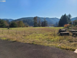 Photo of 0 WINCHESTER AVE, Reedsport, OR 97467 (MLS # 20020872)
