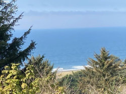 Photo of Wallace, Gold Beach, OR 97444 (MLS # 20075948)