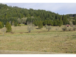 Photo of 0 Bugle LOOP , Unit 45, Oakridge, OR 97463 (MLS # 20157338)