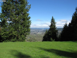 Photo of 0 JEWEL DR, Roseburg, OR 97471 (MLS # 20242667)