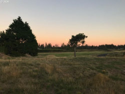 Photo of Wind and Sea LOOP , Unit 14, Warrenton, OR 97146 (MLS # 20248397)