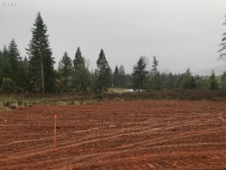 Photo of 17438 STATE HIGHWAY 42 , Unit 1, Camas Valley, OR 97416 (MLS # 20255573)