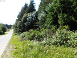 Photo of Twenty Fifth ST, Port Orford, OR 97465 (MLS # 20332254)