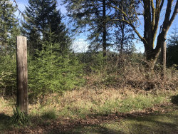 Photo of Butler RD, Junction City, OR 97448 (MLS # 20414491)