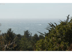 Photo of Hillside Acres RD , Unit 124, Gold Beach, OR 97444 (MLS # 20512793)