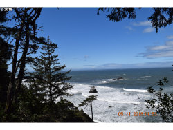 Photo of Chantrelle LN, Gold Beach, OR 97444 (MLS # 20526460)