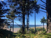 Photo of King ST, Port Orford, OR 97465 (MLS # 20580442)