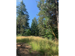 Photo of Bennett Creek RD, Cottage Grove, OR 97424 (MLS # 20595671)