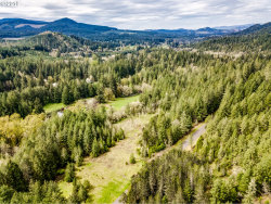 Photo of RR Anderson RD, Dexter, OR 97431 (MLS # 20602793)
