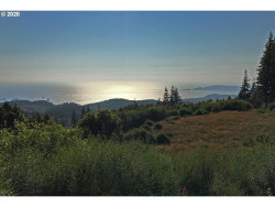 Photo of 0 China Mountain RD, Port Orford, OR 97465 (MLS # 20643572)