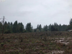 Photo of 17438 STATE HIGHWAY 42 , Unit 2, Camas Valley, OR 97416 (MLS # 20699221)