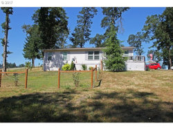 Photo of 93053 LAVENDER LN, Cheshire, OR 97419 (MLS # 17204009)
