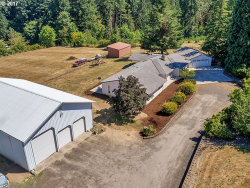 Photo of 14100 SW STICKNEY DR, Hillsboro, OR 97123 (MLS # 17351266)