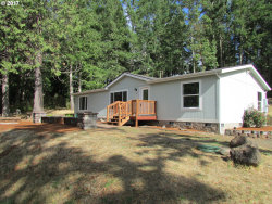 Photo of 29077 COTTAGE GROVE LORANE RD, Cottage Grove, OR 97424 (MLS # 17458529)