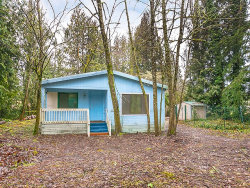Photo of 8811 SE 287TH AVE, Boring, OR 97009 (MLS # 17571954)