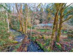 Photo of 78763 RAT CREEK RD, Cottage Grove, OR 97424 (MLS # 18178938)