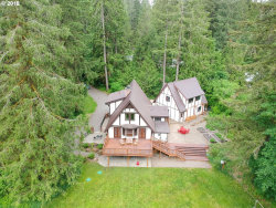 Photo of 30199 TWIN CREEK LN, Scappoose, OR 97056 (MLS # 18238588)