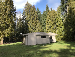 Photo of 55161 COLUMBIA RIVER HWY, Scappoose, OR 97056 (MLS # 18311845)