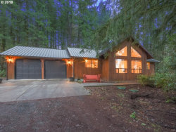 Photo of 20605 NE 242ND AVE, Battle Ground, WA 98604 (MLS # 18416610)