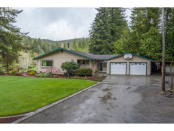 Photo of 58672 GARDEN VALLEY RD, Coquille, OR 97423 (MLS # 19014408)