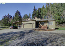 Photo of 36410 NW JENNY CREEK RD, La Center, WA 98629 (MLS # 19020065)