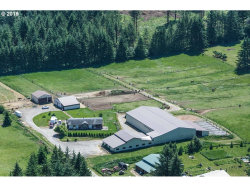 Photo of 38500 NW 14TH AVE, Woodland, WA 98674 (MLS # 19074978)