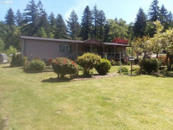 Photo of 200 SETTLERS CT, Elkton, OR 97436 (MLS # 19109874)