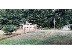 Photo of 27585 SWINGING BRDG RD, Gold Beach, OR 97444 (MLS # 19128316)