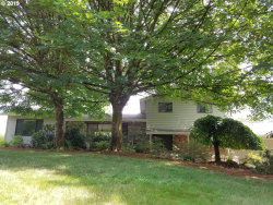 Photo of 38615 NW 29TH AVE, Woodland, WA 98674 (MLS # 19130463)