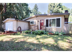 Photo of 3804 PLOMONDON LN, Vancouver, WA 98661 (MLS # 19135114)