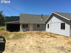 Photo of 12443 LOON LAKE RD, Reedsport, OR 97467 (MLS # 19135185)